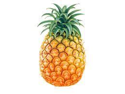 My Favorite Fruit is Watermelon Sheihannas Blog
